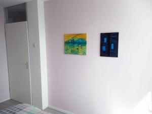 web_schilderij_geplaats